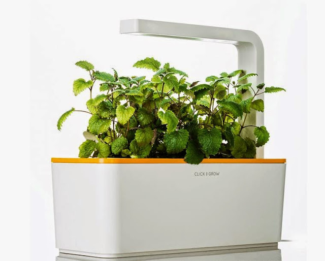 Best Gifts For Family - Smart Herbs Garden (15) 5