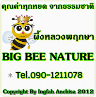 BIG BEE NATURE