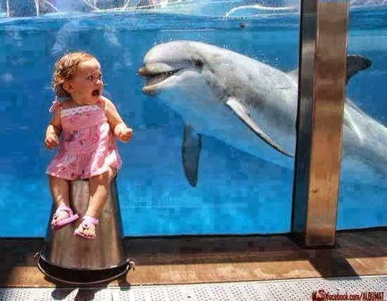amazing funny pictures,Cute kids scared from fish in Tank.funniest pics,Funniest baby weaping pics