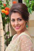 Madhu Shalini sizzling in saree-thumbnail-19