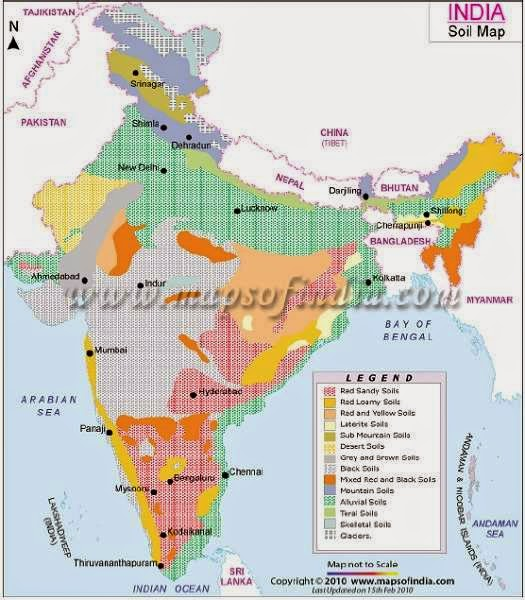 alluvial soil is found in