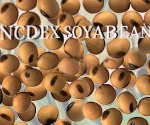 soyabean NCDEX , Soyabean Tips, agri commodity tips , free agri calls