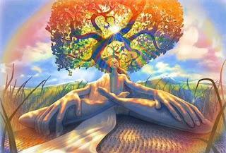 meditação raízes