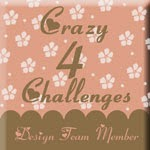 Crazy 4 Challenges Design Team