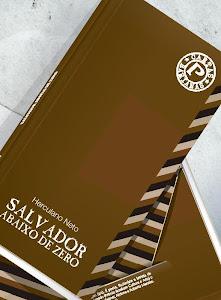 SALVADOR ABAIXO DE ZERO (2012)