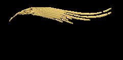 Банк Контракт логотип