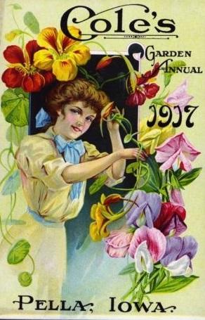 1907 seed catalog