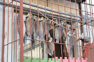 Fish drying in a window in hutong