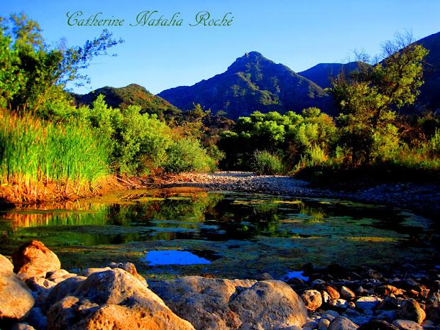 stunning nature landscapes