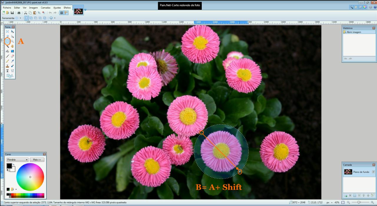 Paint.NET-Ferramenta elipse mais tecla shift