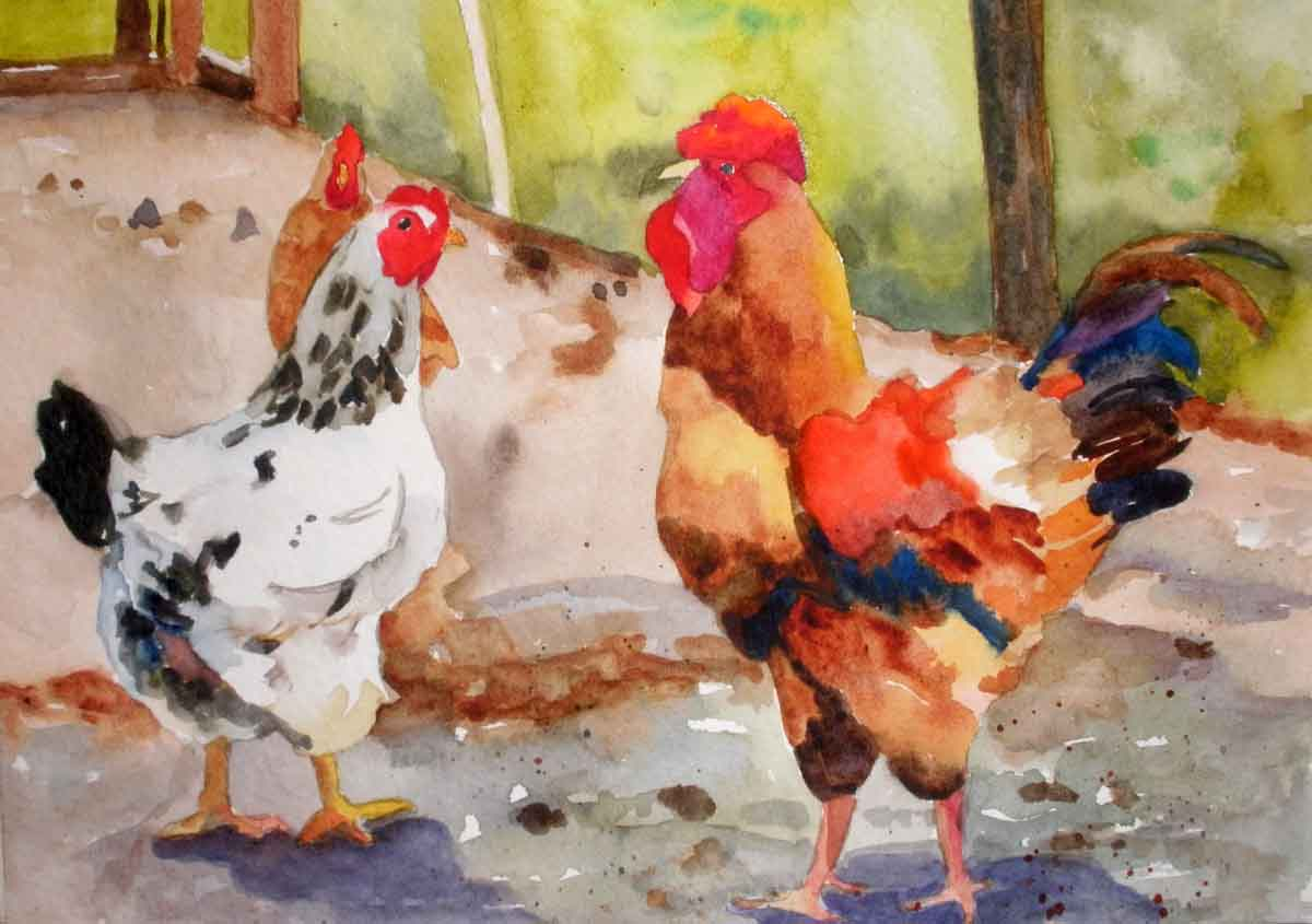 Watercolor artists names - 5 25x7 5 Watercolor On Strathmore Cold Press Paper Painted Yesterday From A Photo I Took At My Friend S Chicken Pen By Tyler Tx The Rooster S Name Is Big