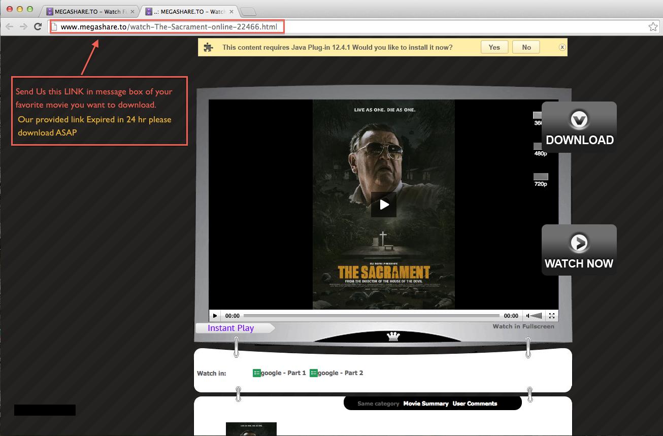 megashare video downloader online