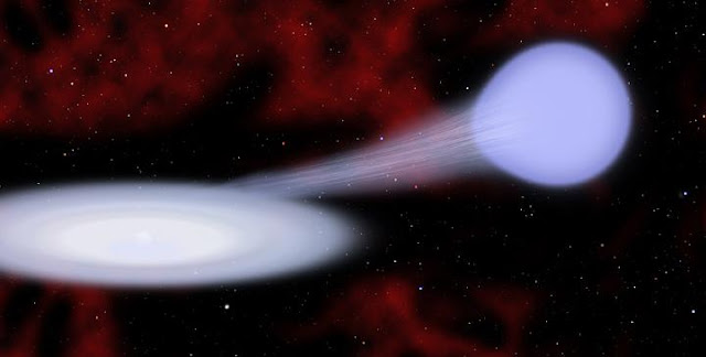 This artist's conception shows the suspected progenitor of a new kind of supernova called Type Iax. Material from a hot, blue helium star at right is funneling toward a carbon/oxygen white dwarf star at left, which is embedded in an accretion disk. In many cases the white dwarf survives the subsequent explosion.  Credit: Christine Pulliam (CfA)