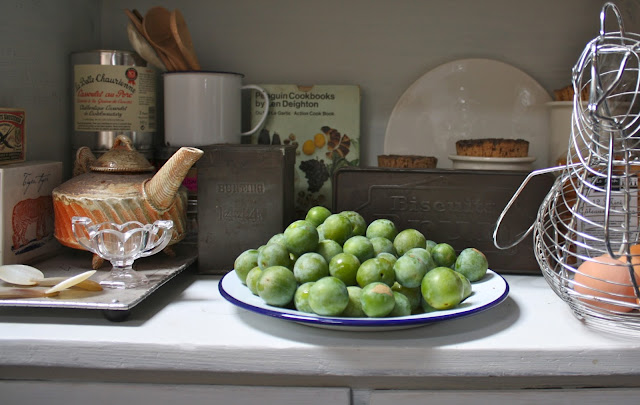 greengages in kitchen