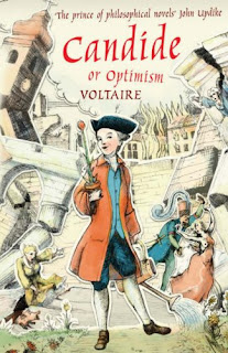 an overview of the novel candide by voltaire Voltaire's candide, free study guides and book notes including comprehensive chapter analysis, complete summary analysis, author biography information, character profiles, theme analysis, metaphor analysis, and top ten quotes on classic literature.