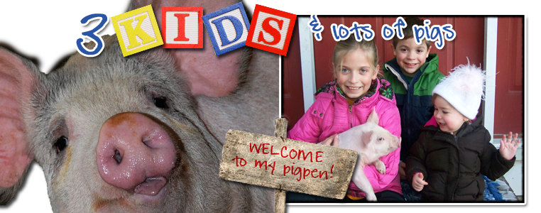 3 kids and lots of pigs:  welcome to my pig pen