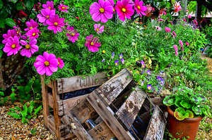 Creative Ways to Use Wooden Crates in the Garden
