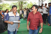 Dictator movie launch photos-thumbnail-12