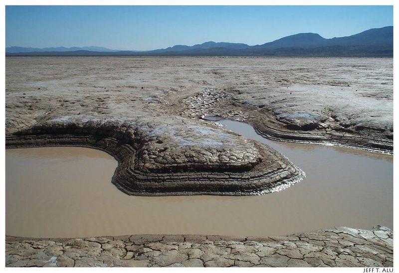 The Dry Lake 800px-Mojave_CoyoteDryLake