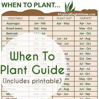 a typical english home when to plant vegetables guide