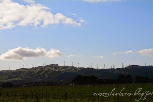 Windmills Scenery