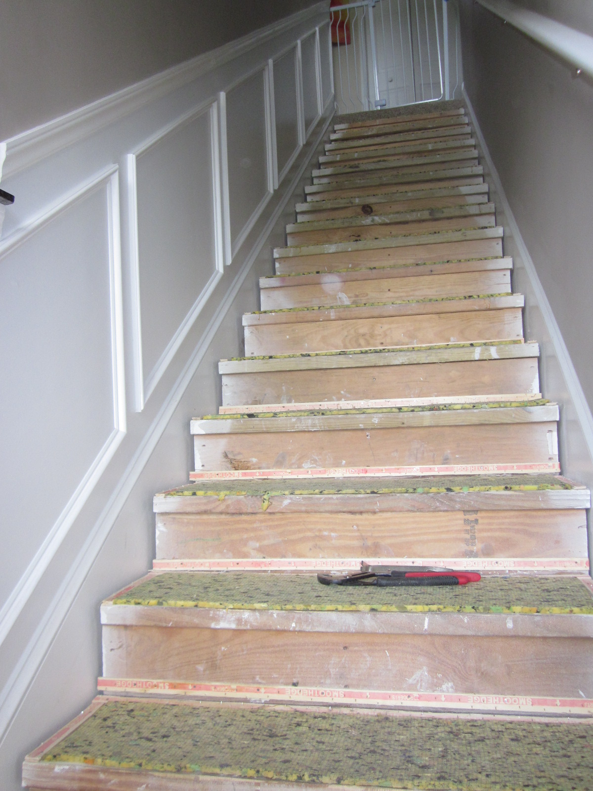 Hubby Used A Metal Putty Knife To Get The Carpet Padding Up: