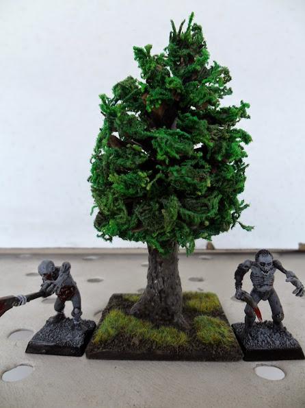 El nacimiento de un bosque - Página 2 Arbol%2B5%2BSAM_0839