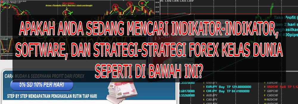 Strategi profit forex tiap hari