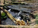 Raven Run Stream