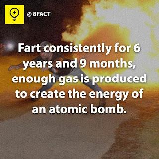 fact gas