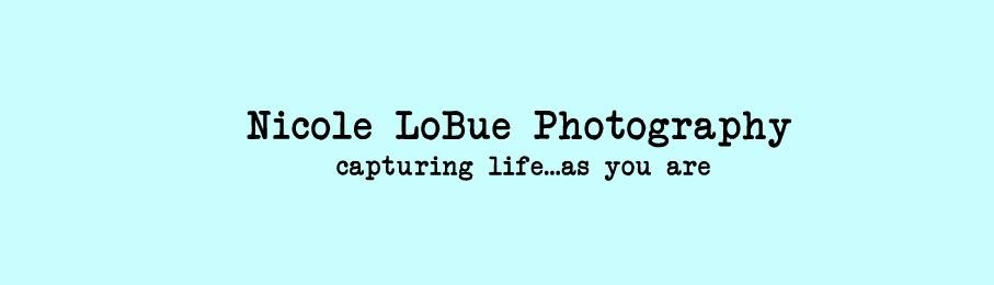 Nicole LoBue Photography