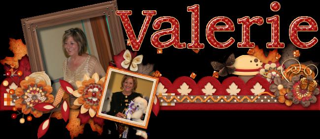 Valerie Ford_Coton de Tulear