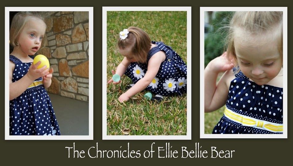 The Chronicles of Ellie Bellie Bear