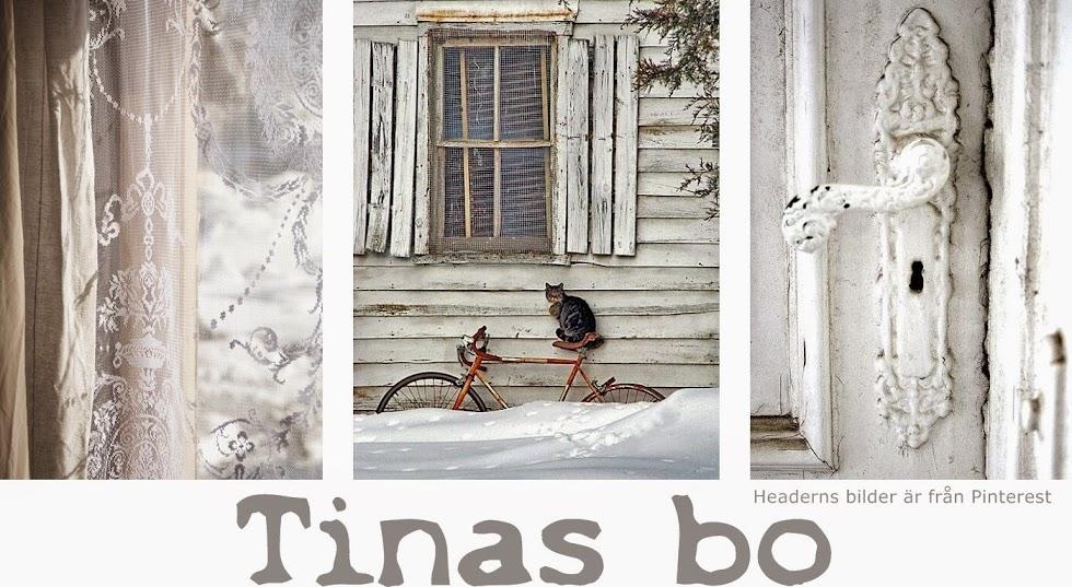 Tinas bo