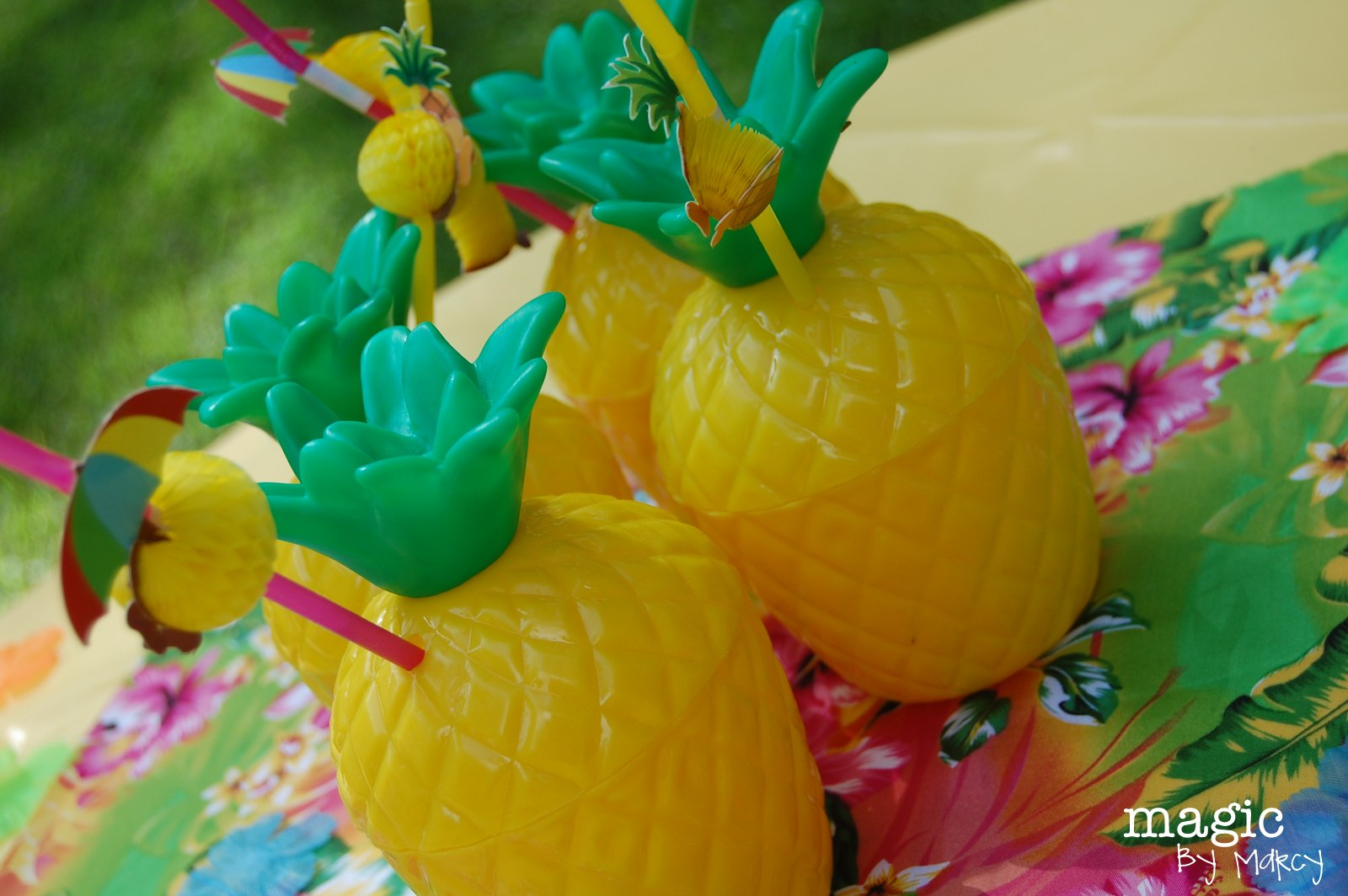 join us for a 3rd birthday luau magic by marcy