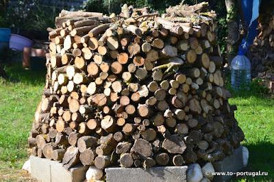 дрова в Португалии