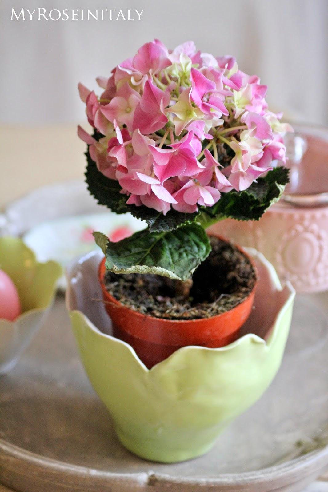 My roseinitaly casa di primavera e ultimi acquisti for Ultimi progetti di casa