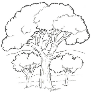 Árvores para pintar