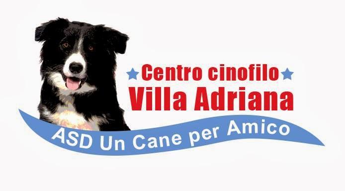 Il blog del centro cinofilo villa adriana - asd un cane per amico