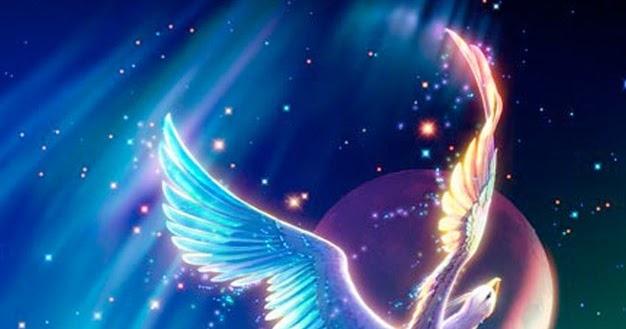 blazingphoenix  facts about phoenix bird