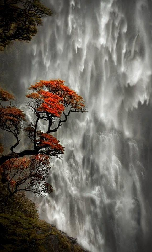 Devils Punchbowl Waterfall, New Zealand