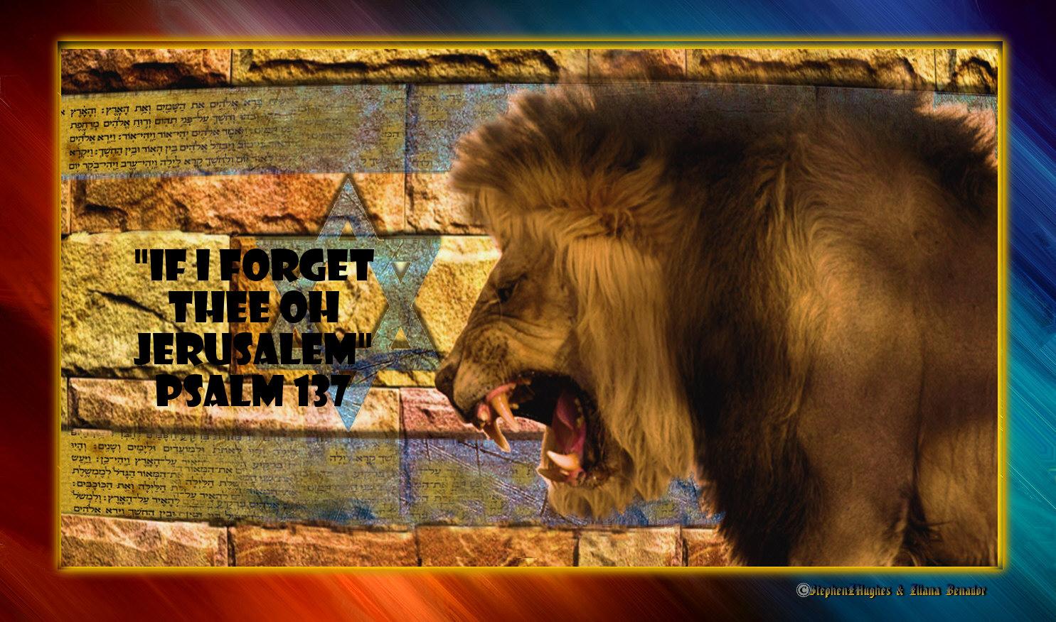 http://3.bp.blogspot.com/-1XerLUv6FAE/T3iVKfEDM-I/AAAAAAAAAio/lopXVubk2Vg/s1600/GIMP%252B-%252BSEHBAT-JERUSALEM-30MARCH.jpg