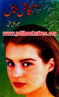 Akash Bail By Aleem ul Haq Haqqi