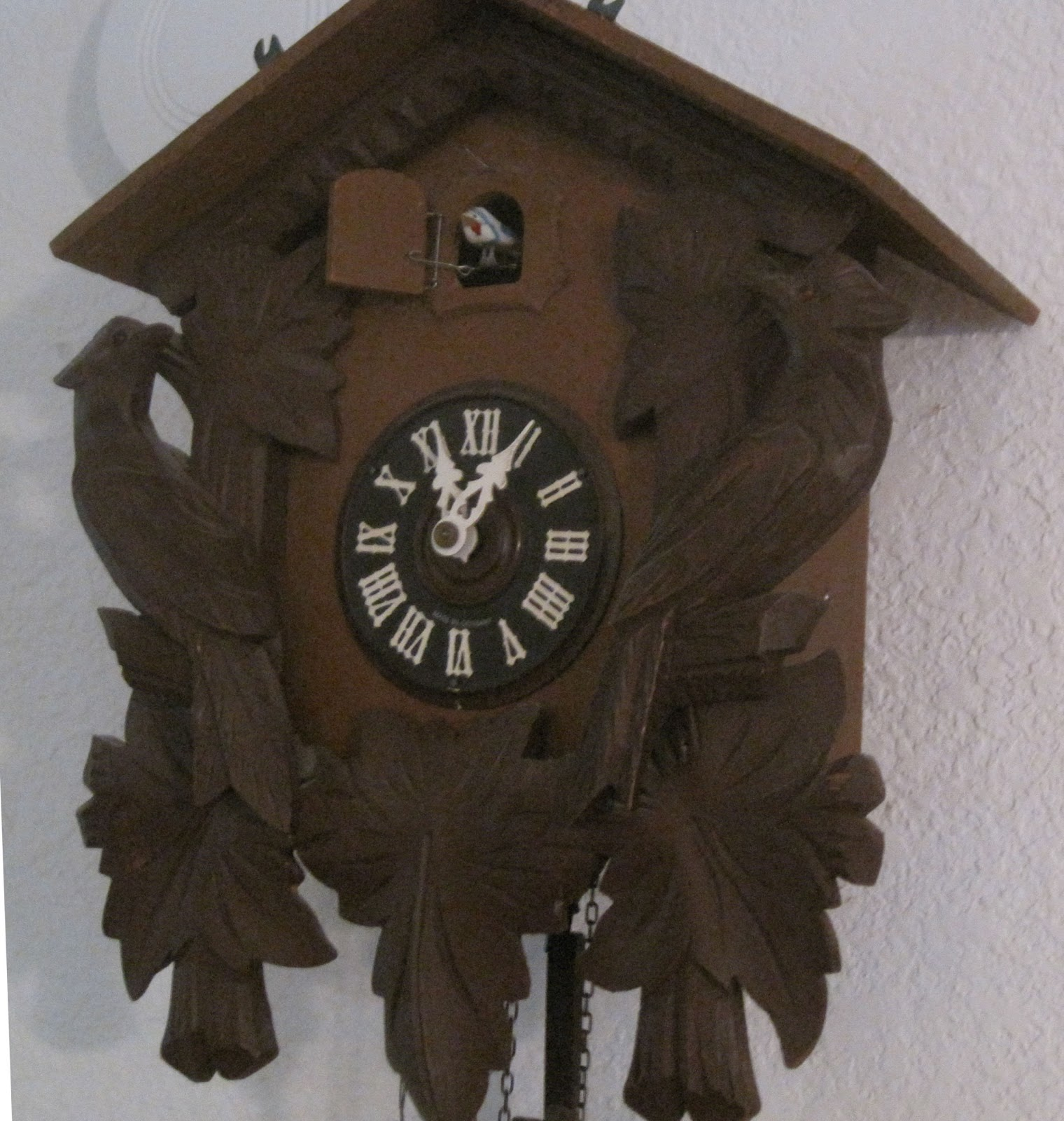 Scene through my eyes odd little jumbled thoughts - Cuckoo bird clock sound ...