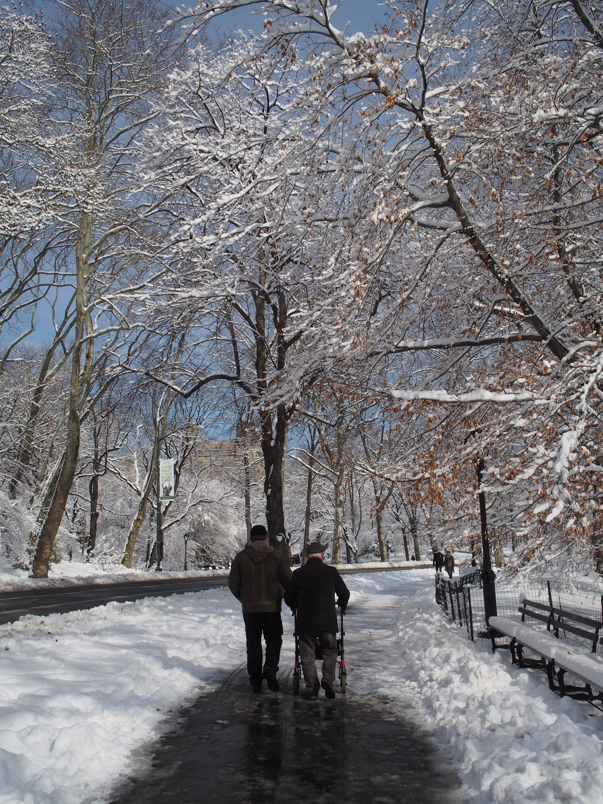 Walking in a Winter Wonderland #walking #walkinginawinterwonderland #centralpark #nyc 2014