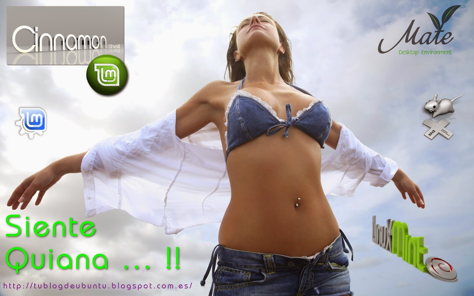 Linux Mint 17 Quiana Cinnamon tu blog de ubuntu