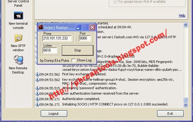Inject telkomsel manual proxy work akhir desember 2013 for Proxe vigila 3 manuale