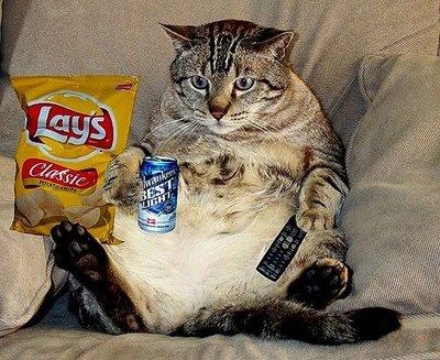 Couch potato meme