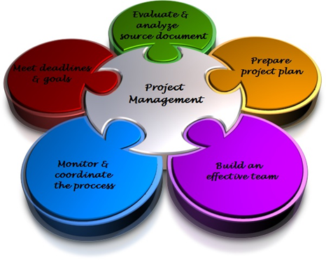 project manager it