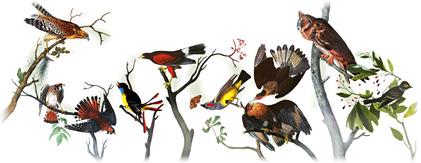 226th_Birthday_of_John_James_Audubon, Google Doodle: 226th Birthday of John James Audubon, picture, image, photo, pic, wallpaper,